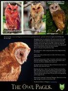 owl_eye_001.pdf - Page 6