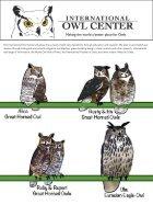 owl_eye_001.pdf - Page 7