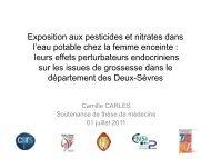Exposition aux pesticides et nitrates dans l'eau potable chez la ...