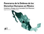 Panorama de la Defensa de los Derechos Humanos en México