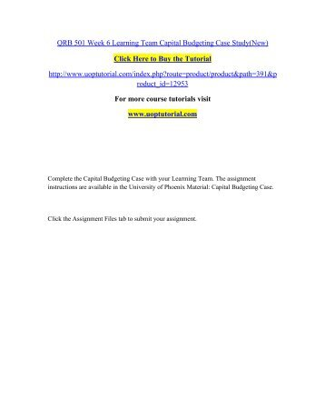 capital budgeting case study qrb 501 excel
