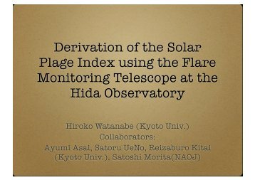 Plage Index using the Flare Monitoring Telescope at the Hida Observatory