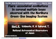 in coronal multiple loops observed with the Norikura Green-line Imaging System