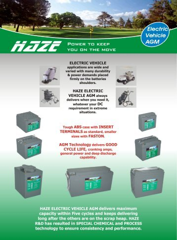 Electric Vehicle AGM - Haze Battery