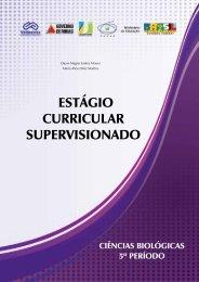ESTÁGIO CURRICULAR SUPERVISIONADO