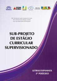 SUB-PROJETO DE ESTÁGIO CURRICULAR SUPERVISIONADO
