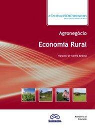 Economia Rural - CEAD - Unimontes