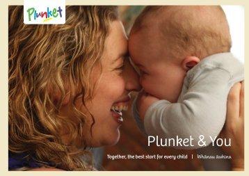 Plunket visits