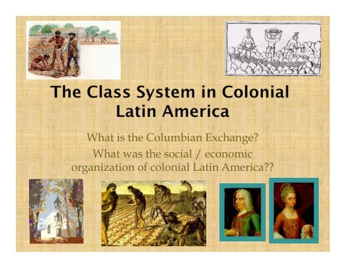 What was the social / economic organization of colonial Latin America??