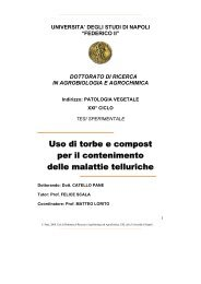 Asciugatrice PER ARIA CONDIZIONATA ALFA Berera 09//2005-2006