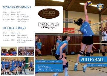 FSV_Flyer_DINlang_Wickelfalz_DRUCK.pdf