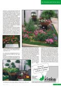 Juni 2007 - Seite 5