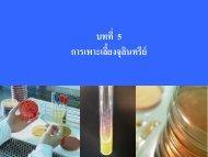 การเพาะเลี้ยงจุลินทรีย์