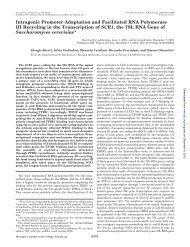 Intragenic Promoter Adaptation and Facilitated RNA Polymerase III ...