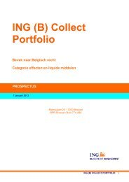 ING (B) Collect Porfolio - ING Belgium