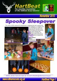 Articles photos news and views can be sent to:hbeditor@odihamscouts.org.uk