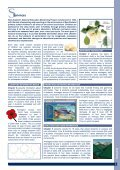 INFORMATION - Page 6
