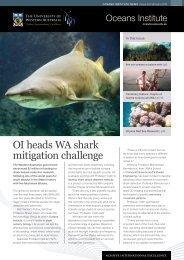 OI heads WA shark mitigation challenge