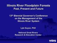 Illinois River Floodplain Forests