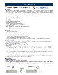 Anigen Rapid E. canis Ab Test Kit - Vet Diagnostic