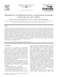 Mechanism for the differential toxicity of neonicotinoid insecticides in ...