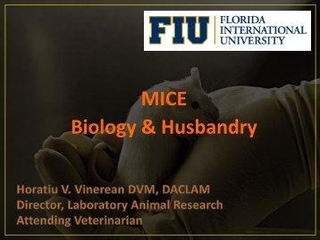 Biology & Husbandry