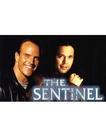 The Sentinel School