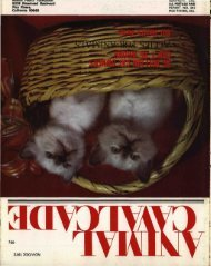November-December 1972 - Animal Health Foundation
