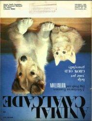 Spring 1971 - Animal Health Foundation