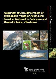 Cumulative Environmental Impact Assessment - International Rivers
