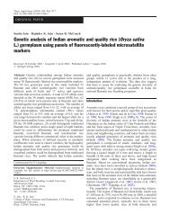 Genetic analysis of Indian aromatic and quality rice (Oryza ... - CDFD
