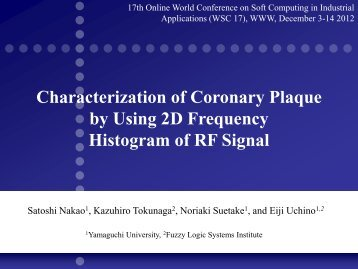 Characterization of Coronary Plaque by Using 2D Frequency Histogram of RF Signal