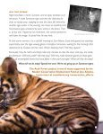 to Camera Traps - Page 7