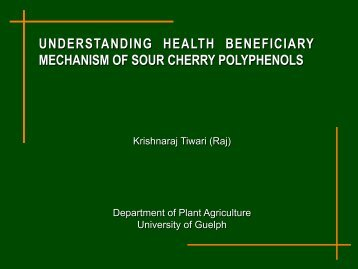 UNDERSTANDING HEALTH BENEFICIARY MECHANISM OF SOUR CHERRY POLYPHENOLS