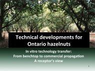 Technical developments for Ontario hazelnuts