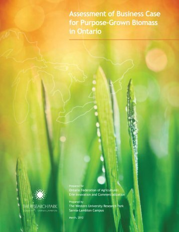 Assessment of Business Case for Purpose-Grown Biomass in Ontario