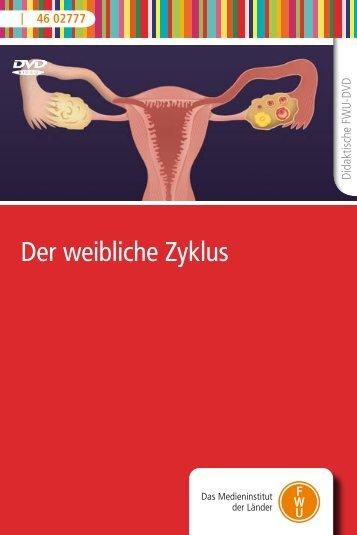 Der weibliche Zyklus - FWU