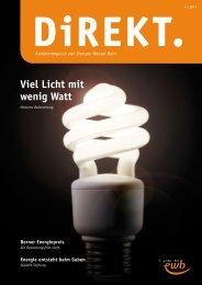 DiREKT 4/2011 - Energie Wasser Bern