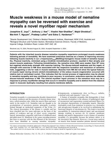 regulation of muscle hypertrophy essay Recent perspectives regarding the role of dietary protein for the promotion of muscle hypertrophy with resistance exercise training.