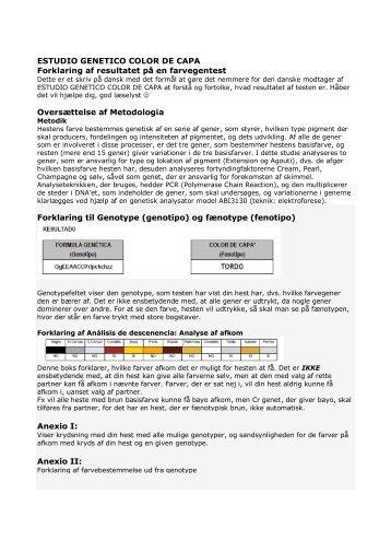 Sådan læser du resultatet af farvegentesten - Dansk PRE Avlsforening