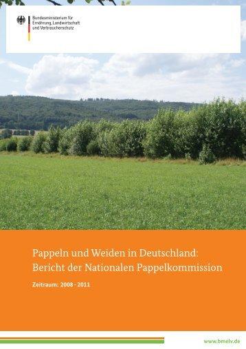 Pappeln und Weiden in Deutschland: Bericht der Nationalen - BMELV