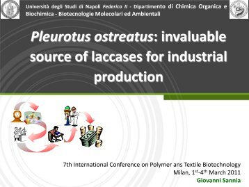 Pleurotus ostreatus invaluable source of laccases for industrial production