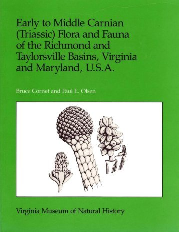 early to middle carnian (triassic) flora and fauna - SunStar Solutions
