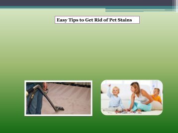 Easy Tips to Get Rid of Pet Stains
