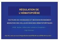 http://fmc.med.univ-tours.fr/Pages/Recherche/DPRB-diff-onco/DPRB-diff-onco.html