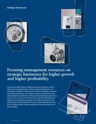 Strategic Businesses - Casio