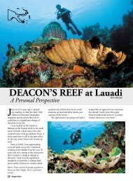 Nuigini Blue Deacon's Reef Article - Indo-Pacific Images
