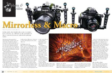 Mirrorless & Macro