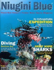 Nuigini Blue Great White Shark article (2.7MB) - Indo-Pacific Images