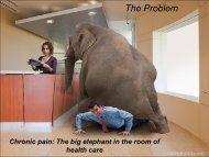 The problem of chronic pain.pdf